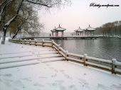Winterdays in Changchun