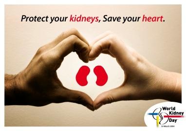 World kidney day