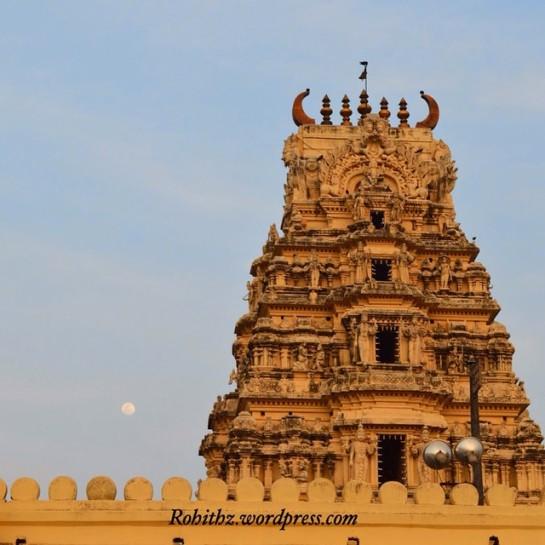 Aprameya temple,  channa (1)
