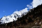 Himalayas (10)