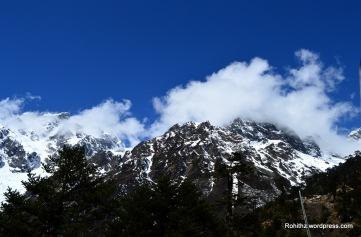 Himalayas (6)