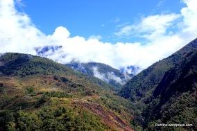India to Bhutan (7)