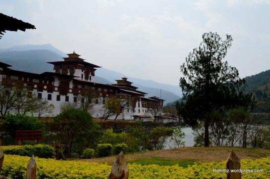 Punakha Dzong (18)