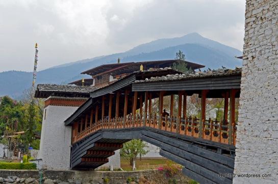 Punakha Dzong (5)