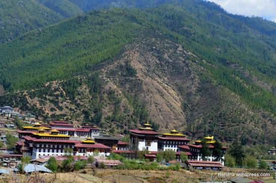 Thimphu city (3)