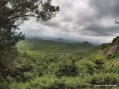 Lakkidi viewpoint (4)