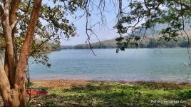 Parambikulam river
