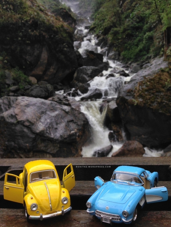 yellowie & vader feeling the waterfalls (2)