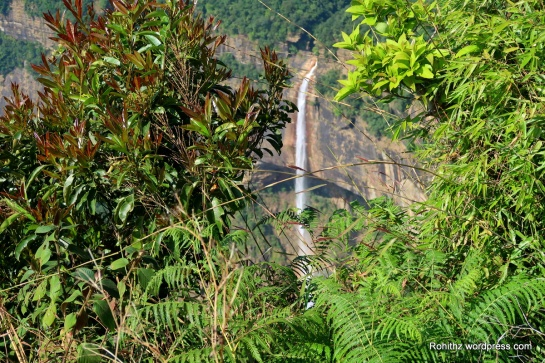 Nohkalikai waterfalls_Meghalaya (5)