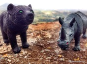 Maddy bear and little rhino (3)